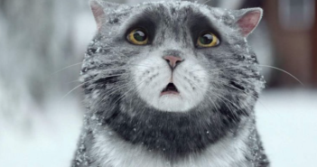 Sainsbury's Christmas Advert 2015