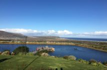 Cape Point Vineyards 06